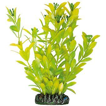 Aquatic Plants Planta de Plástico Higrófila Polisperma