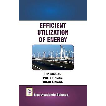 Efficient Utilization of Energy by R. K. Singal - 9781781831199 Book