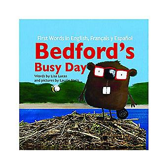 Bedfordas Busy Day - Story Book by Lauri Stein Lisa Lucas - 9789384841