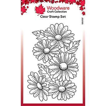 Woodware Clear Singles Viisi päivänkakkaraa 4 x 6 postimerkissä