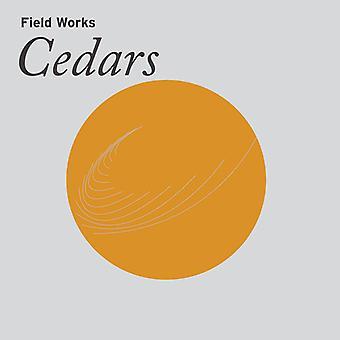 Field Works - Cedars [Vinyl] USA import