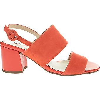 Högl Pom 91055424200 universal  women shoes