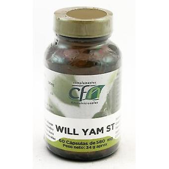 CFN Wild Yam St 60 kapslar 580 mg