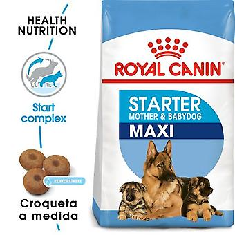 Royal Canin Giant Starter (Dogs , Dog Food , Dry Food)