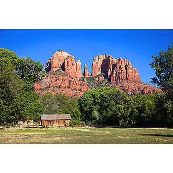Tapetmaleri Cathedral Rock Sedona i Arizona