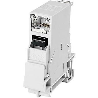 Montagerails connector RJ45 socket, ingebouwd aantal pinnen: 8P8C J80023A0000 lichtgrijs Telegärtner J80023A0000 1 PC (s)