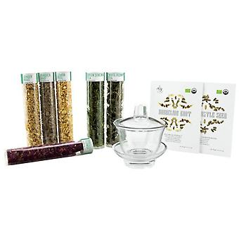 Tea It Yourself Detox Tea Blending Kit (Kitchen , Kitchen accessories)