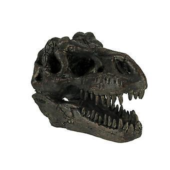 ティラノサウルス レックス恐竜頭化石像小