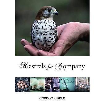Kestrels for Company by Gordon Riddle