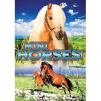 Mini Horses [DVD] USA import