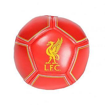 Liverpool FC Hacky Säkki