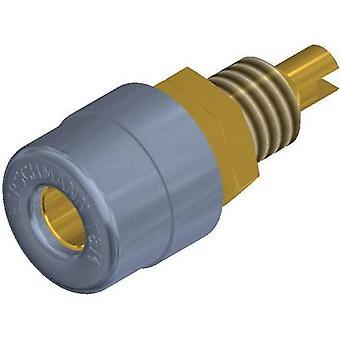 SKS Hirschmann BIL 20 Au Jack aansluiting Socket, verticale verticale Pin diameter: 4 mm grijs 1 PC('s)