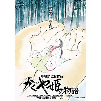 The Tale of Princess Kaguya Movie Poster (11 x 17)