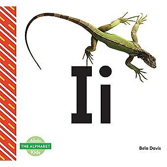 II by Bela Davis - 9781680808858 Book