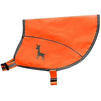 Alcott Essentials Visibility Vest Orange (Dogs , Dog Clothes , Waistcoats)