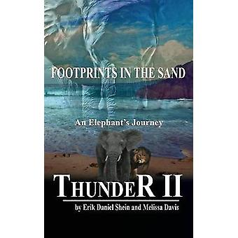 Thunder II Footprints in the Sand by Shein & Erik Daniel