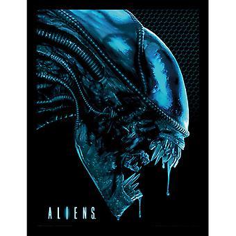 Aliens Head Sininen kehystetty levy 30 * 40cm