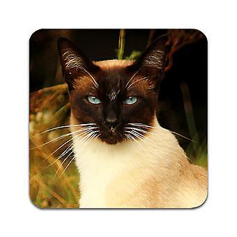 2 ST Cat Сиамские подстаканники