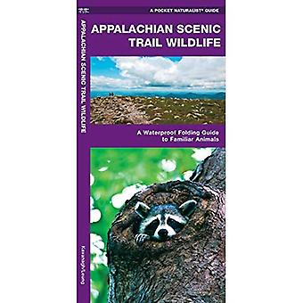 Appalachian Scenic Trail Wildlife: A Waterproof Folding Guide to Familiar Animals (A Pocket Naturalist Guide)