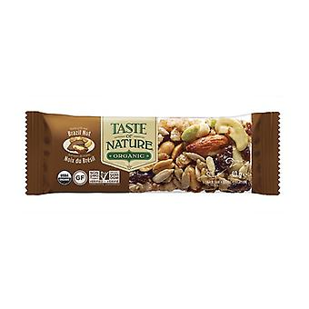 Organic Brazil Nut Bar 1 bar of 40g