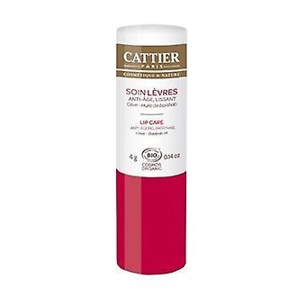 Organic anti-aging smoothing lip care - 4 g 4 g