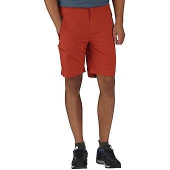 Regatta Mens Leesville Lightweight Quick Dry Walking Shorts
