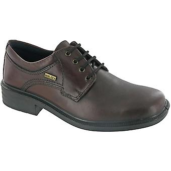 Cotswold Mens Sudeley Leather Waterproof Casual Oxford Shoe Brown
