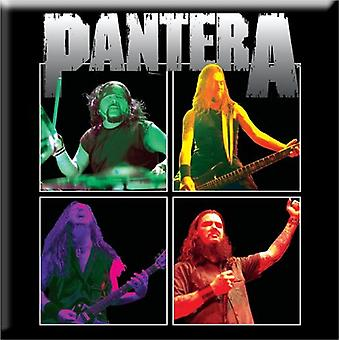 Pantera Fridge Magnet Band Photo logo new Official 76mm x 76mm