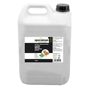 Specialcan Black Champu Mentol 5 L (Dogs , Grooming & Wellbeing , Shampoos)