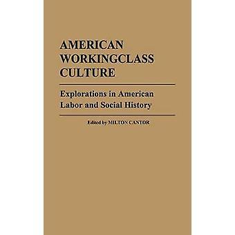 الاستكشافات الثقافة ووركينجكلاس الأميركية في العمل الأمريكية والتاريخ الاجتماعي ميلتون & كانتور