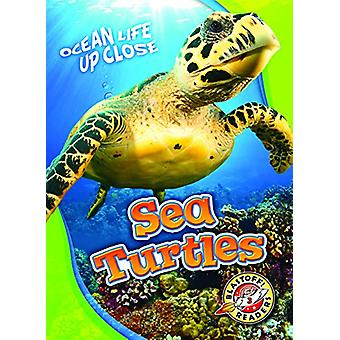 Sea Turtles by Kari Schuetz - 9781626174221 Book