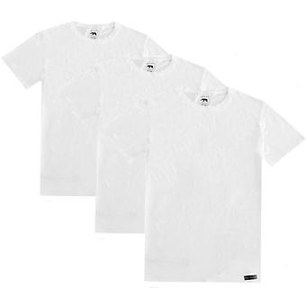 Ted Baker Basics Crew Neck 3 Pack T-Shirts - White