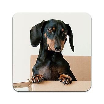 2 ST Dog Tax Coasters
