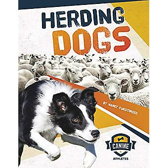 Herding Dogs by Nancy Furstinger - 9781641855952 Book