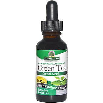 Nature's Answer, Green Tea, Alcohol-Free, 2,000 mg, 1 fl oz (30 ml)