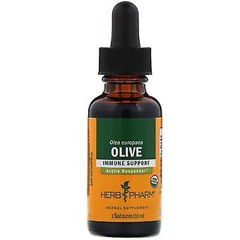 Herb Pharm, Olive , 1 fl oz (30 ml)