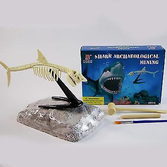Shark Fossils Archeology Biology Digging And Excavation Kids Science Kits