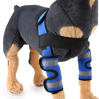 Evago mit reflektierendem Streifen-Hund Vorderbeinstütze Karpalstütze mit Sicherheit Reflektierende Gurte für vorderes Hockgelenk, Kreuzband, Wundheilung