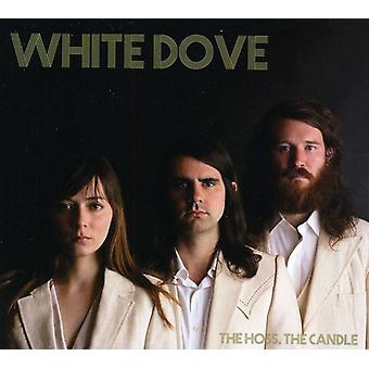 White Dove - Hoss the Candle [CD] USA import