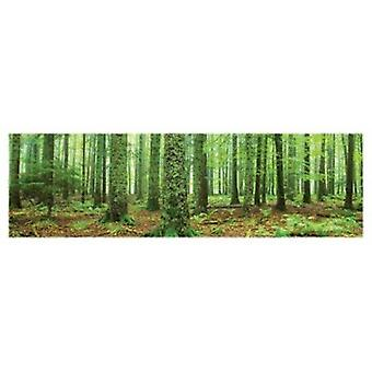 Rain Forest Poster Poster Print