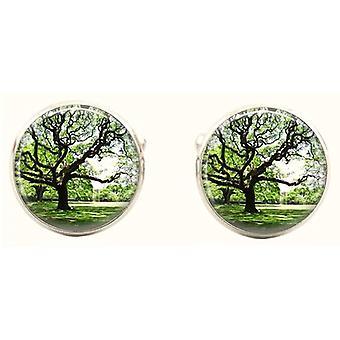Bassin och bruna runda träd manschettknappar - Green/Brown