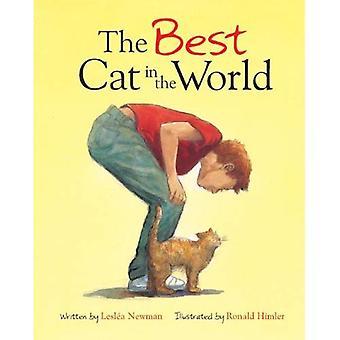 Beste katten i verden