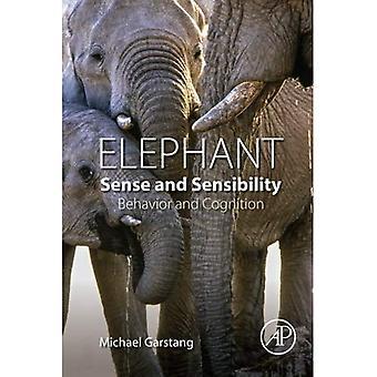 Elefantti aisti ja tunto herkkyys