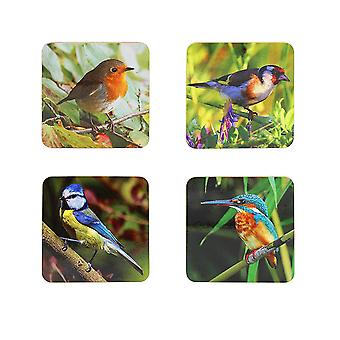 Set of 4 British Birds Theme Coasters in Box