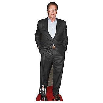 Arnold Schwarzenegger Celebrity Lifesize Pap Udskæring / Standee