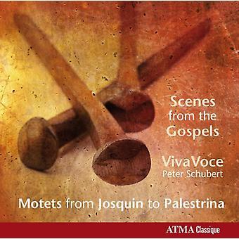 ゴンベール、・ ヴィラールト、Manchicourt、パレストリーナ、Des Prez/M -、福音書からのシーン: パレストリーナ 【 CD 】 USA 輸入するデュファイのモテットから