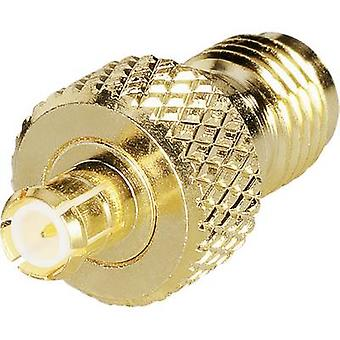 BKL elektronisk 0419124 SMA revers polaritet adapter SMA revers polaritet socket-MCX plugg 1 PC (er)