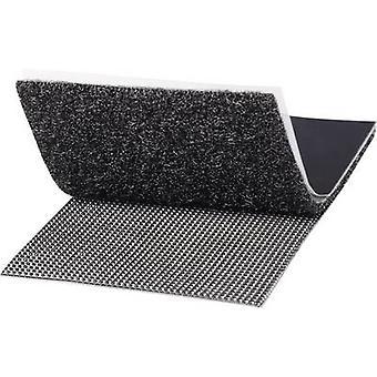 TOOLCRAFT KL50X100SC Gancho e loop fita stick-on Gancho e loop pad, resistente (L x W) 100 mm x 50 mm Black 1 Pair