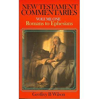 New Testament Commentaries: v. 1: Romans to Ephesians