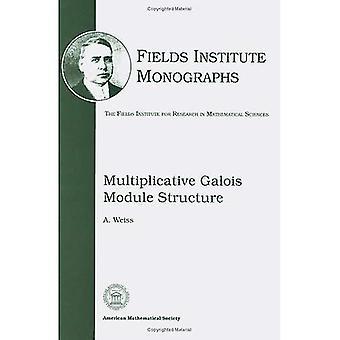 Multiplicative Galois module structure